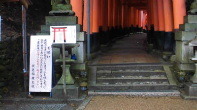 f:id:kabutoyama-tigers:20140216170434j:image