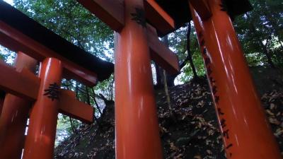 f:id:kabutoyama-tigers:20140216171154j:image