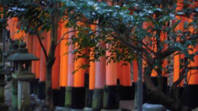 f:id:kabutoyama-tigers:20140216172009j:image
