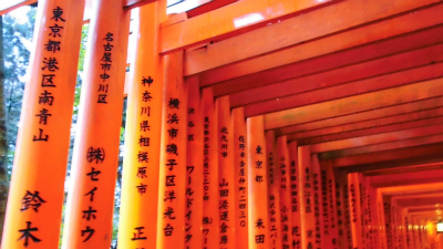 f:id:kabutoyama-tigers:20140218132109j:image