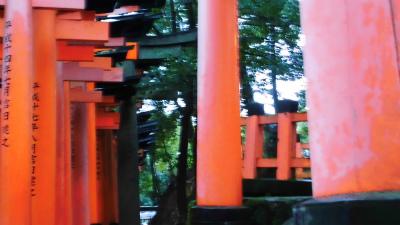 f:id:kabutoyama-tigers:20140218140022j:image