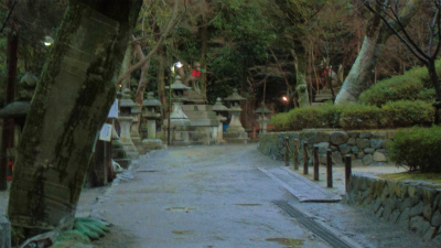 f:id:kabutoyama-tigers:20140218150541j:image