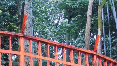 f:id:kabutoyama-tigers:20140303163929j:image