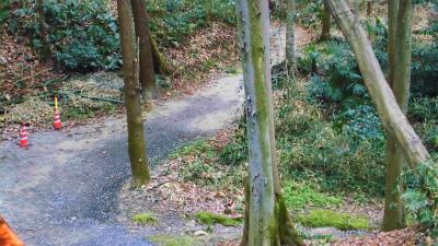 f:id:kabutoyama-tigers:20140303163956j:image