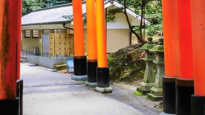 f:id:kabutoyama-tigers:20140303164504j:image