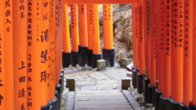 f:id:kabutoyama-tigers:20140303164707j:image