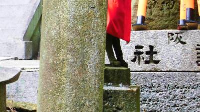 f:id:kabutoyama-tigers:20140303165524j:image