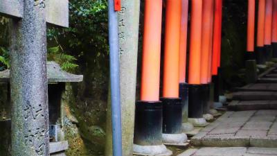 f:id:kabutoyama-tigers:20140303165603j:image