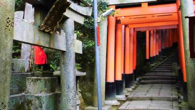 f:id:kabutoyama-tigers:20140303165700j:image