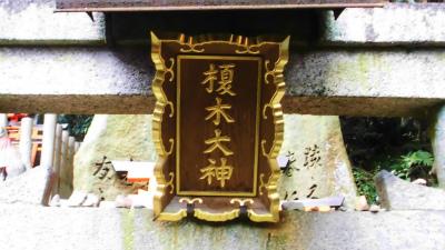 f:id:kabutoyama-tigers:20140303170238j:image