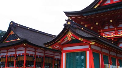 f:id:kabutoyama-tigers:20140303171353j:image