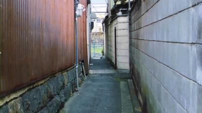 f:id:kabutoyama-tigers:20140306121616j:image