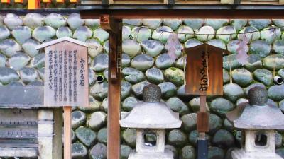 f:id:kabutoyama-tigers:20140306121801j:image