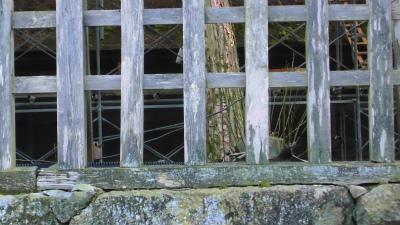 f:id:kabutoyama-tigers:20140310115138j:image
