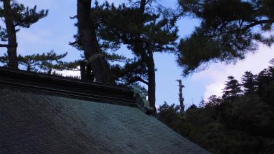 f:id:kabutoyama-tigers:20140310120356j:image