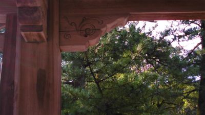 f:id:kabutoyama-tigers:20140310120500j:image