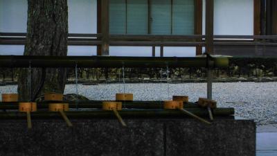 f:id:kabutoyama-tigers:20140311123656j:image
