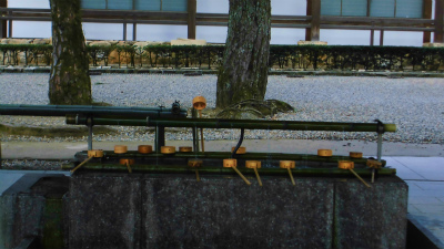 f:id:kabutoyama-tigers:20140311131421j:image