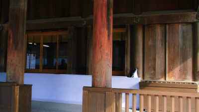f:id:kabutoyama-tigers:20140311142119j:image