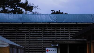 f:id:kabutoyama-tigers:20140311175522j:image