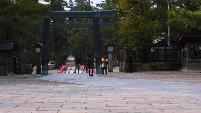 f:id:kabutoyama-tigers:20140311175524j:image