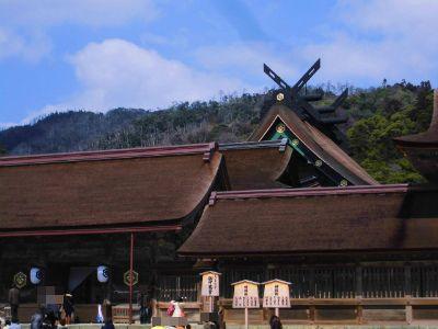 f:id:kabutoyama-tigers:20140311192245j:image