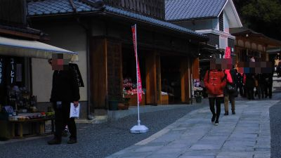 f:id:kabutoyama-tigers:20140316185350j:image