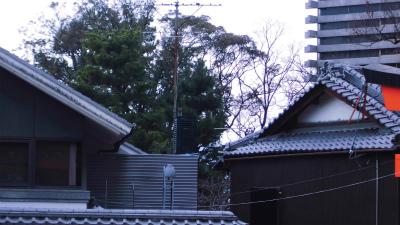 f:id:kabutoyama-tigers:20140316194617j:image