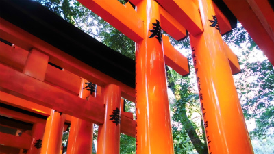 f:id:kabutoyama-tigers:20140316195428j:image