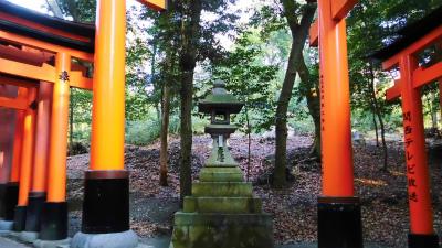 f:id:kabutoyama-tigers:20140316201016j:image