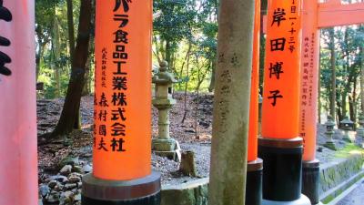 f:id:kabutoyama-tigers:20140316201916j:image