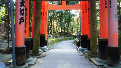 f:id:kabutoyama-tigers:20140316202144j:image