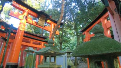 f:id:kabutoyama-tigers:20140317130608j:image