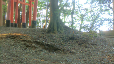 f:id:kabutoyama-tigers:20140317132839j:image
