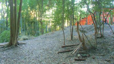 f:id:kabutoyama-tigers:20140317134918j:image