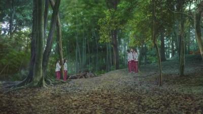 f:id:kabutoyama-tigers:20140317134919j:image