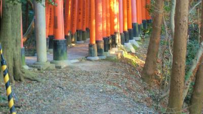 f:id:kabutoyama-tigers:20140317140208j:image