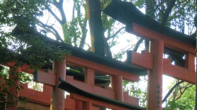 f:id:kabutoyama-tigers:20140317140405j:image