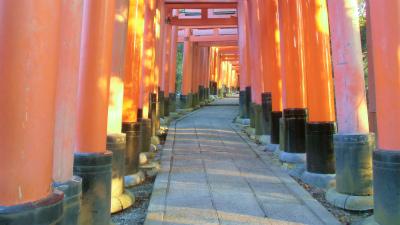 f:id:kabutoyama-tigers:20140317143611j:image