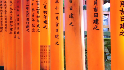 f:id:kabutoyama-tigers:20140318142005j:image