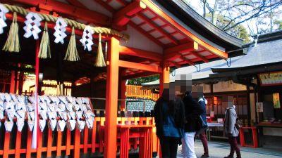 f:id:kabutoyama-tigers:20140318145233j:image