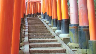 f:id:kabutoyama-tigers:20140318205655j:image