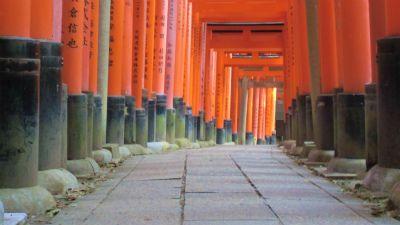 f:id:kabutoyama-tigers:20140318210523j:image