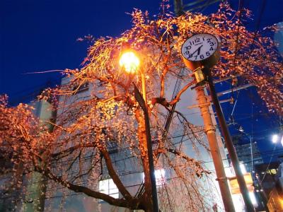 f:id:kabutoyama-tigers:20140331075324j:image