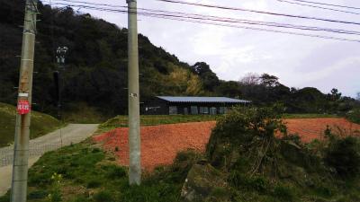 f:id:kabutoyama-tigers:20140401201157j:image