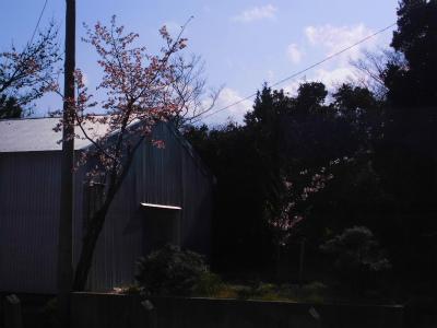 f:id:kabutoyama-tigers:20140430111118j:image
