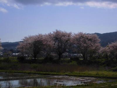 f:id:kabutoyama-tigers:20140430112413j:image