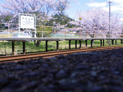 f:id:kabutoyama-tigers:20140430131143j:image