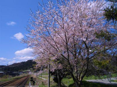 f:id:kabutoyama-tigers:20140430131146j:image