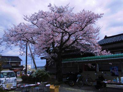 f:id:kabutoyama-tigers:20140430132620j:image